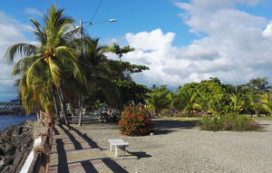 Free things to do in Quepos: Parque Nahomi